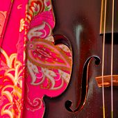 picture of violin  - Square closeup of violin against hot pink background - JPG