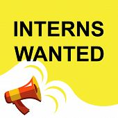 Megaphone With Interns Wanted Announcement. Flat Style Illustration poster