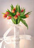 Bouquet of tulips in vase