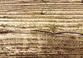 Old brown rotten wood texture.