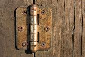 Old door hinge on wooden door.