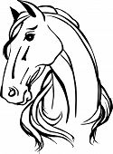 pic of horse head  - Simple black and white drawing of horse head - JPG