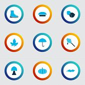 Season Icons Colored Set With Maple, Puddle, Honey And Other Tart Elements. Isolated  Illustration S poster