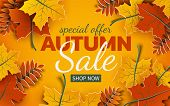 Autumn 3d Sale Banner, Paper Colorful Tree Leaves On Yellow Background. Autumnal Design For Fall Sea poster