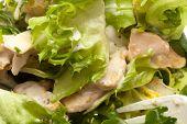 delicious and fresh caesar salad, closeup photo