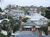 Houses On An Auckland Hillside