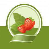 fresh strawberry illustration, vector label