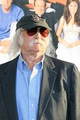 LOS ANGELES - JUNE 25: David Crosby at the premiere of 'License To Wed' at the Cinerama Dome in Holl