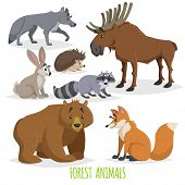 Cartoon Forest Animals Set. Wolf, Hedgehog, Moose, Hare, Raccoon, Bear And Fox. Funny Comic Creature poster