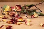 Glasses And Dry Rose With Petals Close Up