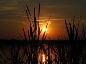 Pôr do sol com Taboa