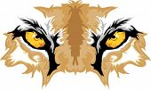 foto of cougar  - Graphic Team Mascot Image of Cougar Eyes - JPG