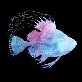 Beautiful Watercolor Silhouette Of Fish