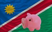 Piggy Rich Bank And  National Flag Of Namibia