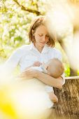 stock photo of lactation  - Mother feeding her baby with breast outdoor shot - JPG