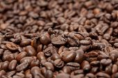 Close-up image of coffee beans