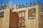 Wood Framing Construction