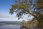 stock photo of whalehead club  - The gazebo in Currituck Heritage Park in historic Corolla - JPG
