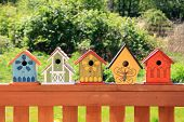 Collection of colorful wooden birdhouses.