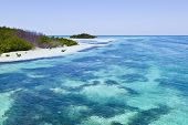 Beautiful Scenic Beaches And Clear Water In The Keys
