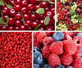 Collage of Ripe Sweet Red Berries