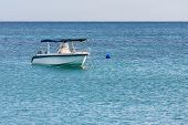 pic of outboard engine  - White speedboat floating on the sea near Mauritius - JPG