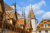 Roofs In Burgundy