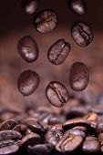 Falling Roasted Coffee Beans On Coffee Background