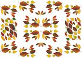 arrangement of multicolor leaves as pattern for tablecloth