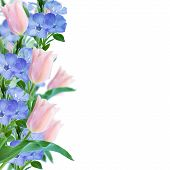 Flowers Border On Pink Background
