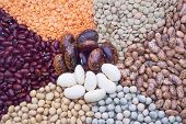 picture of soya beans  - view of beans - JPG