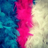 Colorful Feather Boa