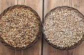 foto of malt  - Two glasss bowl with beer ingredients barley malt - JPG