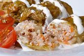 Cabbage Rolls Stuffed With Rice And Meat With Sour Cream