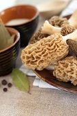 stock photo of morchella mushrooms  - Fresh spring morel mushrooms on a plate - JPG