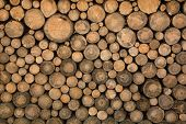 stock photo of lumber  - Big wall of stacked wood logs showing natural discoloration - JPG