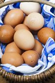 Basket Of Organic Freerange Eggs With Blue And White Cloth