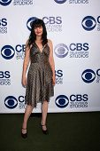 LOS ANGELES - MAY 19:  Pauley Perrette at the CBS Summer Soiree at London Hotel on May 19, 2014 in W