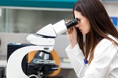 foto of scientist  - Female scientist working in a laboratory - JPG