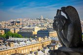 Chimere Looking Toward Basilica Of The Sacred Heart At Notre Dame In Paris