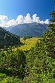 Trentino - Val Di Pejo
