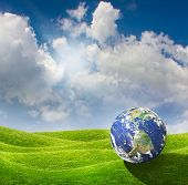 Planet Earth on a beautiful green meadow