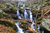 Shenandoah National Park, Dark Hollow Falls -Virginia, USA