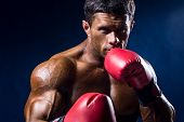 Close-up Portrait Of Boxer In Red Boxing Gloves On A Dark Blue Background