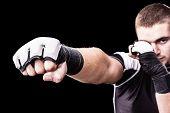 Training Boxer