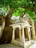 stock photo of jain  - Tree in Ranakpur Jain temple Rajasthan India - JPG