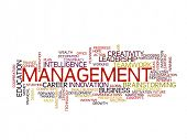 Management strategy concept word cloud