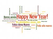 Happy New Year in different language. Words cloud