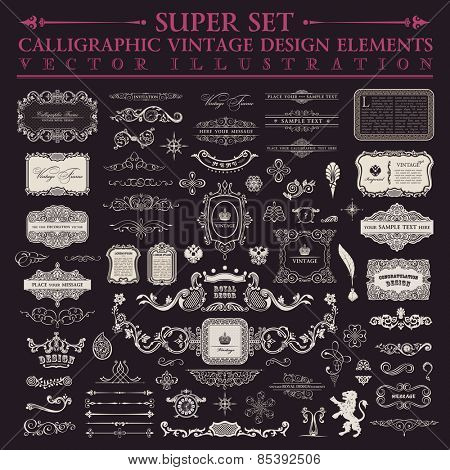 Vector Calligraphic rococo set. Vintage outline components and page enrichment. Fringe outlines coll