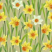 stock photo of jonquils  - Yellow white jonquil daffodil narcissus seamless pattern - JPG